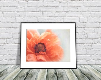 Poppy Wall Art, Housewarming Gift, Master Bedroom Art, Home Decor Wall Art, Flower Lover Gift, Fine Art Photography
