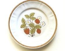 Vintage Dinner Plates / Set of 4 / Americana Hearthside Berries 'n Cream / Japanese Stoneware / Retro Handpainted Plate