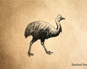 Cassowary Rubber Stamp - 2 x 3 inches