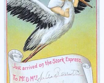 Stork Express Baby Birth Postcard, 1910