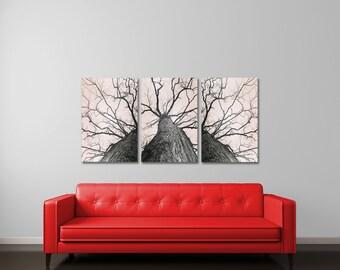 Fine Art Photography, Large Wall Art, Canvas Art Set, Neutral Wall Art Set, Tree Canvas Art, Forest Photography, Large Art Set, Bare Tree