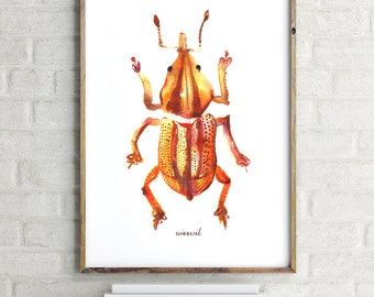Buy 2 Get 1 FREE Bug illustration, Weevil print, Insect print, Bug illustration, Bug watercolor painting, Orange wall decor, Entomology