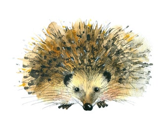 Limited edition print - Hedgehog