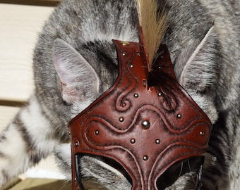 Spartacat Custom Cat Helmet