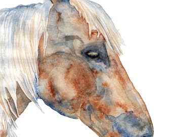 Watercolor Print Horse 8.5 x 11