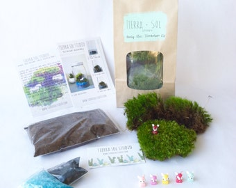 DIY Terrarium Kit - Deer Moss Terrarium Kit Fawn