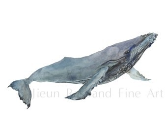 Feeling Free- Humpback whale , Giclee print from original watercolor painting, wall art, nursery art, whale art