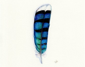 Blue Jay Feather, Watercolor Feather, Feather Art, Blue Feather, Blue Jay, Blue, Feather, Feather Print, Archival Print, Giclee, Nature Art