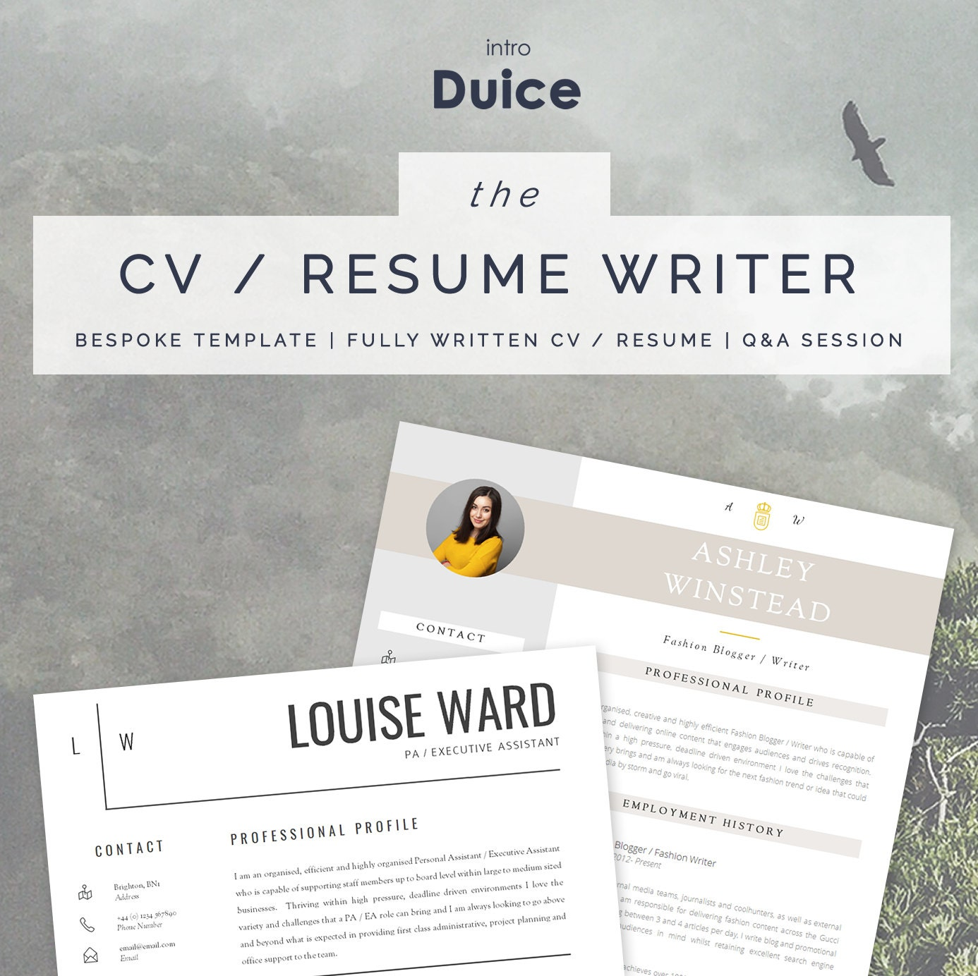Custom resume writing nz