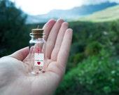 I love you. Te amo. Te quiero. Mensaje en una botella. Miniaturas. Regalo personalizado. Divertida postal de amor.