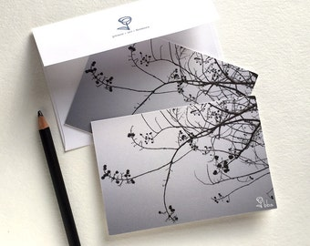 photography card set, tree branches note card set, black and white tree photo notecards, 5 blank cards and envelopes