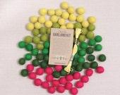 Felt Pom-Poms // Cactus Palette // Garland Kit, Felt Balls, Desert Theme, Southwest, Cactus Craft Kit, Green Poms, Cactus Garland Kit
