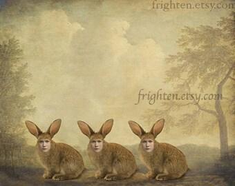 Rabbit Art, Weird Easter Art, Collage Art Print, Surreal Art, Anthropomorphic Art, Three Rabbits, Creepy Cute Art, Mixed Media Art