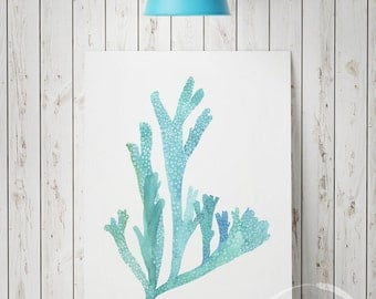 Turquoise and aqua blue seaweed - Fine art print from an original watercolor painting - Giclee print available in size A5, A4, A3