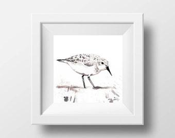 Art Print, Sandpiper, Bird Art, Wine Painting, Ink Drawing, Sea Bird Art, Semi Abstract Art, Bird Painting, Sandpiper Bird, Ocean Bird, Art