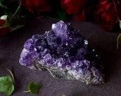 Amethyst Cluster - Amethyst Crystal - Raw Amethyst from Uruguay - Dark Purple Amethyst - Metaphysical Tranquility - Mineral Specimen