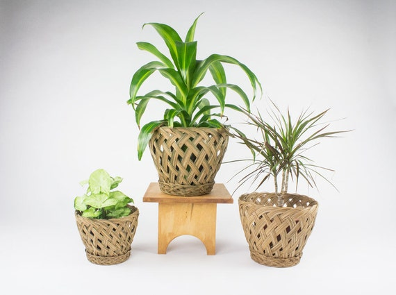 Woven Planters (Set of 3) / Bohemian Decor / Vintage Planter Pots ...