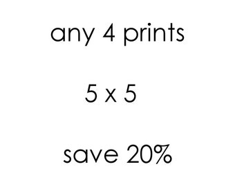 Save 20% Custom Print Set, Fine Art Photography, Choose Any Four 5 x 5 Prints, Wall Art, 4 Photo Set, Wall Gallery