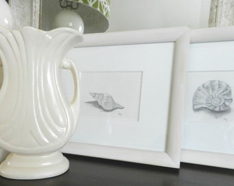 2 Vintage Shell Framed Art. Nautical Beach Cottage Decor. Pencil Sketching. Shabby Chic.