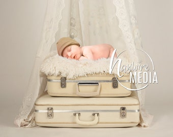 Newborn Baby Toddler Child White Lace Canopy Fur Bed on Suitcase - Studio Digital Backdrop - Photography Background with Fur PNG Coverup