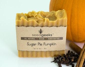 Sugar Pie Pumpkin Handcrafted Soap - All Natural Soap, Fall Soap, Sensitive Skin, Handmade Soap, Vegan Soap, Palm Free, Cold Process Soap