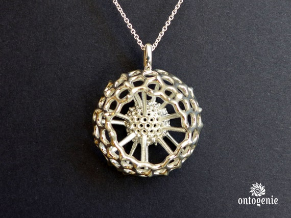 Plankton Spumellaria spineless - Radiolarian pendant  - marine biology - science jewelry in bronze, brass & silver
