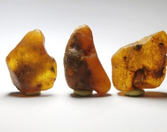 L19 - 3 pieces of amber crude natural NON pierced