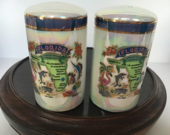 Beautiful State of Florida Souvenir Salt and Pepper Shakers unmarked, Circa 1960s