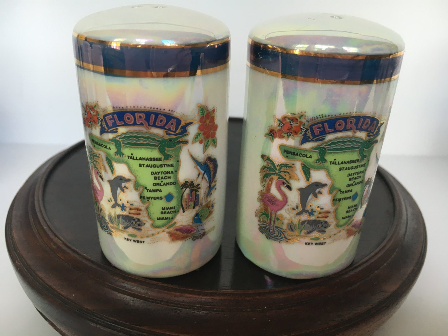 Beautiful State Of Florida Souvenir Salt And Pepper Shakers