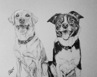 Pet portrait from photograph - drawing, sketch