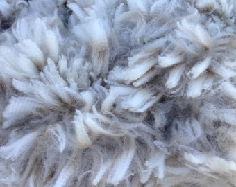 White Alpaca and Merino Fleece blending kit. Superfine, Australian Alpaca, Australian Merino, Raw Fleece, Unwashed, Unprocessed, Raw Fibre