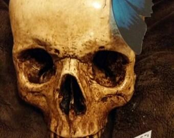 Large skull blue