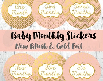 New Blush and Gold Foil Baby Monthly Growth Stickers - Milestone Bodysuit Stickers -Photo Stickers -Baby Month Stickers