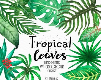 Tropical Leaves Clipart, Watercolor Clipart, Commercial Use Clipart, Watercolor Leaves, Tropical Clipart, Hand Painted Clipart