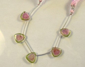 Watermelon tourmaline slice beads 12.5-13mm 22.5ct 5 pieces