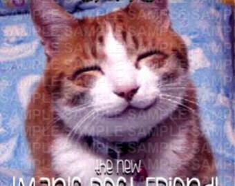 Cats Mans Best Friend Poster Download