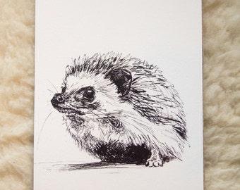 Wild: hedgehog