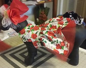 Kentucky Derby dog dress