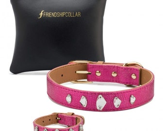 The Glamour Pooch Boutique By FriendshipCollar