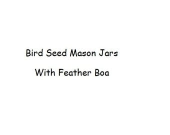 Bird Seed Mason Jars with Feather Boas