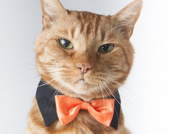 Festive Orange Bow Tie for Cats and Dogs