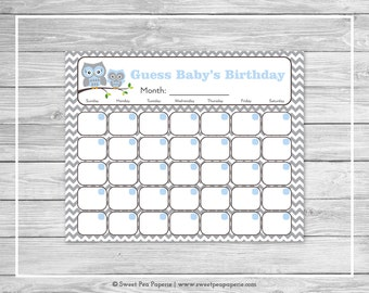 Owl Baby Shower Guess Baby's Birthday - Printable Baby Shower Guess Baby's Birthday - Blue Owl Baby Shower - Baby Birthday Calendar - SP135