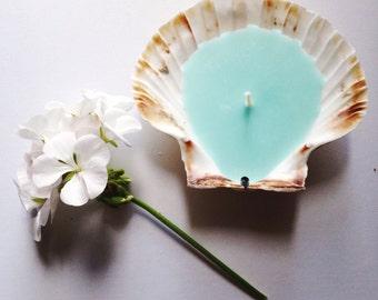 Trio de Saint-Jacques Cornish Shell bougies