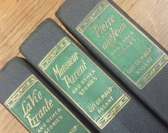 French Book Bundle Set La Vie Errant, Monsieur Parent, Pierre and Jean and other Stories by Guy de Maupassant