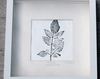 Botanical Printwork, Framed Botanical Printwork, Nature Printwork, Framed Printwork, Botanica, Leaves Printwork, Housewarming Gift