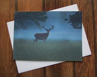 Wildlife Greetings card C6 - Red Deer