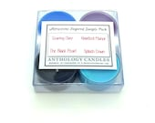 Attractions Inspired Sample Pack - Anthology Candles, Disney Candles, Scented Soy Tea Lights