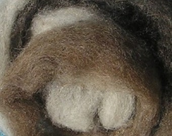 Shetland Wool Roving Multi-Natural