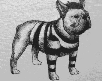 279 French bulldog