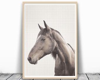 Horse Photography, Horse Print, Photography Print, Horse Art, Animal Photo Print, Large Wall Art, Horse Photo print, download, Printable Art